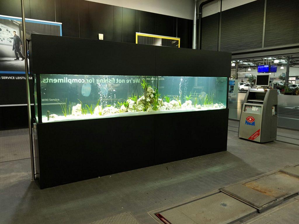 Aquascaping, Premiumaquarium, Designaquarium, Aquariumwartung, Aquariumpflege