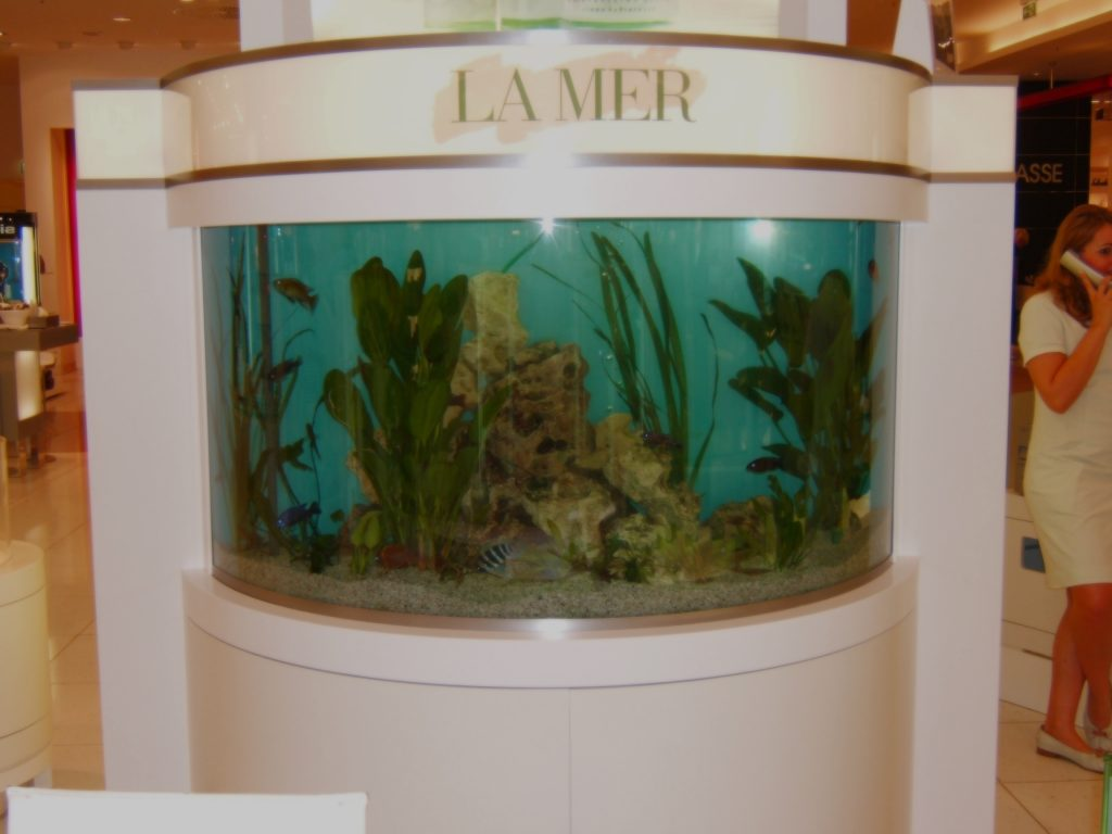 Premium Aquaristik, Design Aquarium, Aquariumpflege, Aquariumwartung