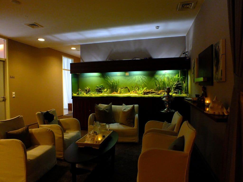 Aquarienanlagenbau, Aquarienbau, Aquarienpflege, Aquarienwartung, Aquariumdesign