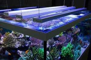 Aquabar LED