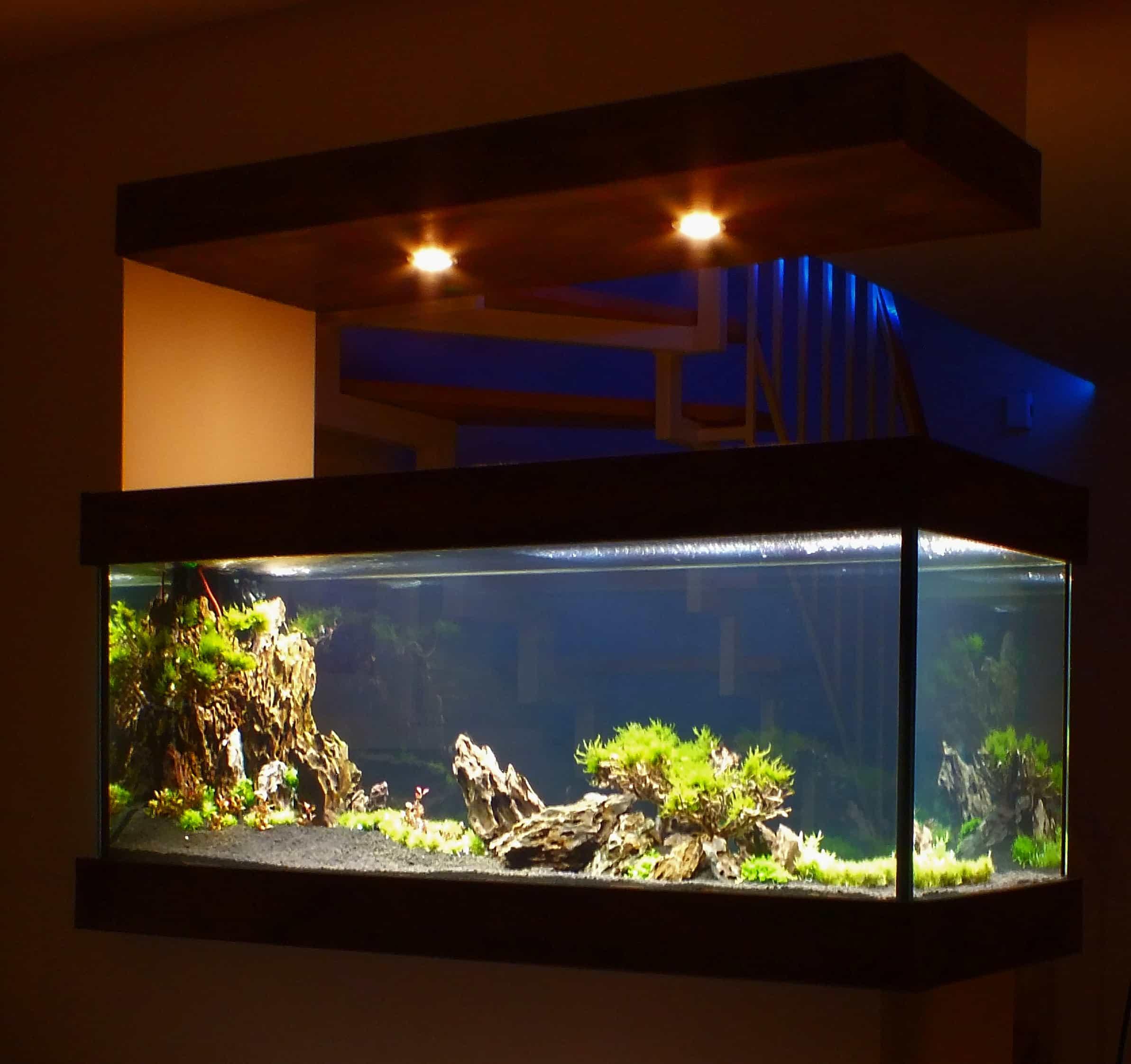 Innenausbau Aquarium Naturkonzepte Amp Design
